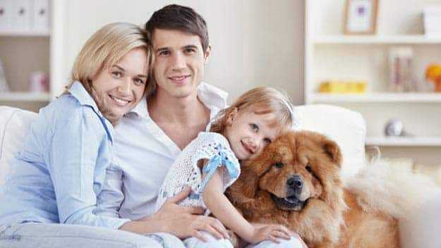 Wills & Trusts dog-young-family Direct Wills Golders Green